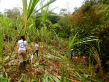 Photos : Accompagnements à la Communauté de Paix de San José de Apartado, dans la Serrania de Abibe